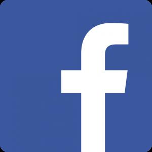 Facebook_Vector_Logo_Hd_02[1]